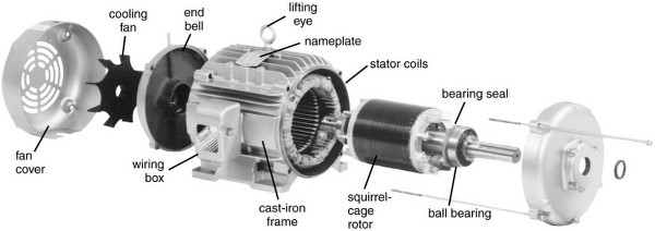 Inside view of an Induction motor