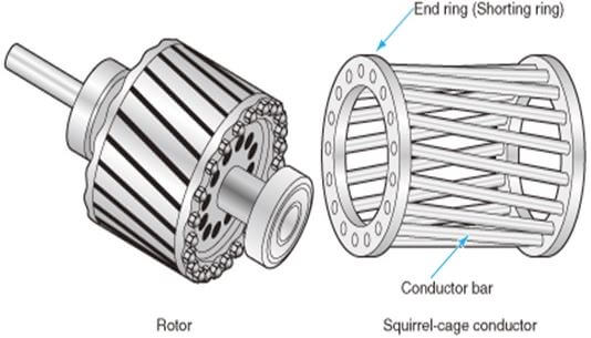 The rotor of a single-phase induction motor